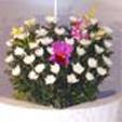 生花籠(菊)×2基